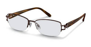 Rodenstock R2167 B brown