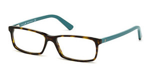 Web Eyewear WE5174 056