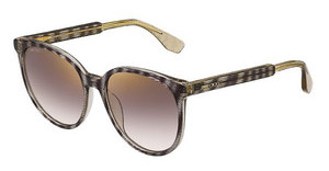 Jimmy Choo REECE/S LXA/NH BROWN MS GLDSTRPGLTBW (BROWN MS GLD)