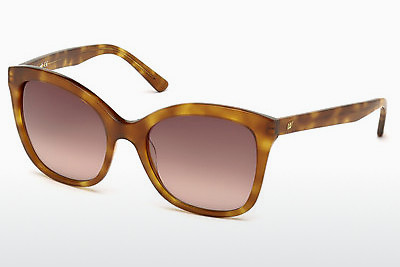 Sluneční brýle Web Eyewear WE0165 53F - Havana, Yellow, Blond, Brown