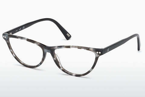 Brýle Web Eyewear WE5305 005