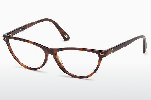 Brýle Web Eyewear WE5305 052