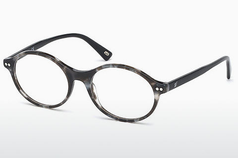 Brýle Web Eyewear WE5306 005