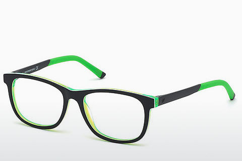Brýle Web Eyewear WE5308 05B