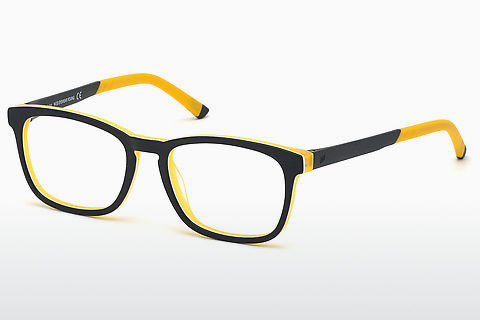 Brýle Web Eyewear WE5309 05C